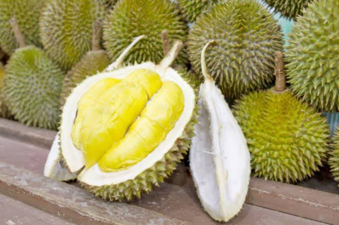 Durian Fruit Image - GETSVIEW Market