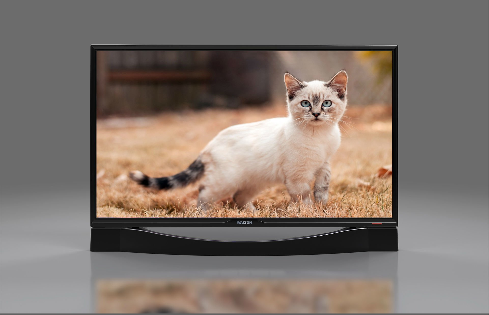 Walton 32 inch HD TV - Getsview